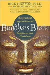 Buddha's Brain, Hardwiring Happines
